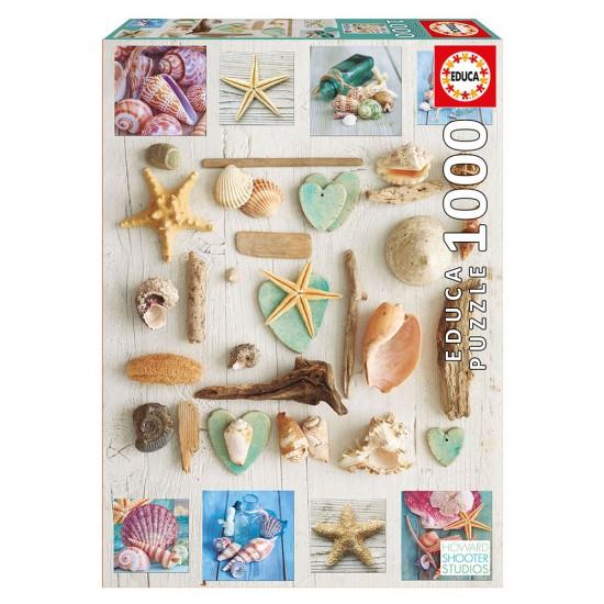 Puzzle 1000 Colagem de Conchas