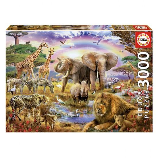 Puzzle 3000 Charco Bajo Arco Iris