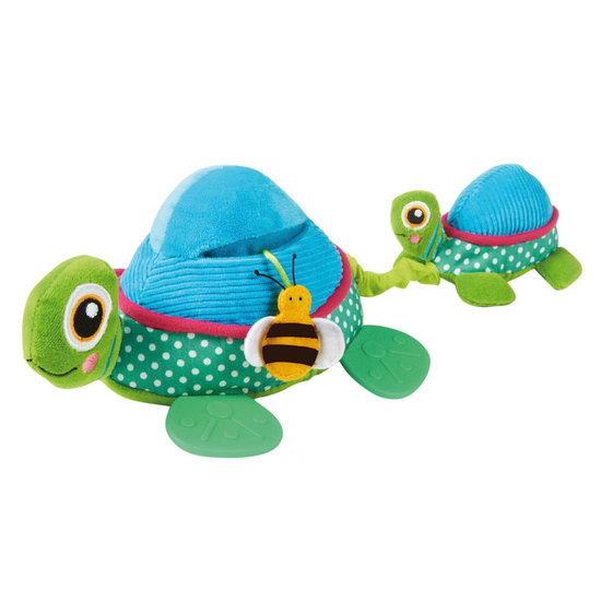 Oops Multi Activity Toy Turtle